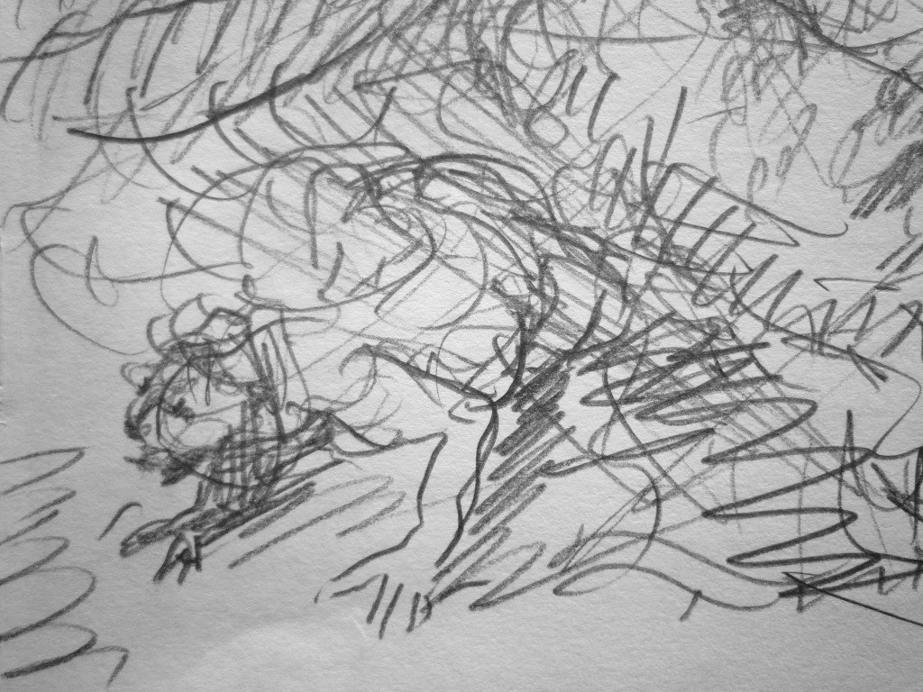 '…Nash of Girash would go anyold where in the weeping world on his mottled belly…' FW sketchbook p. 75 (detail)