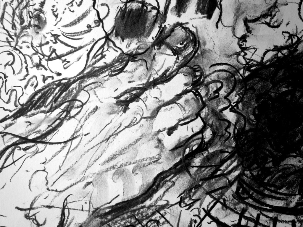 FW p.85.2 - 6, (detail) charcoal